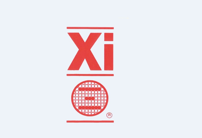 Xi INFORMATION PROCESSING SYSTEMS LTD.
